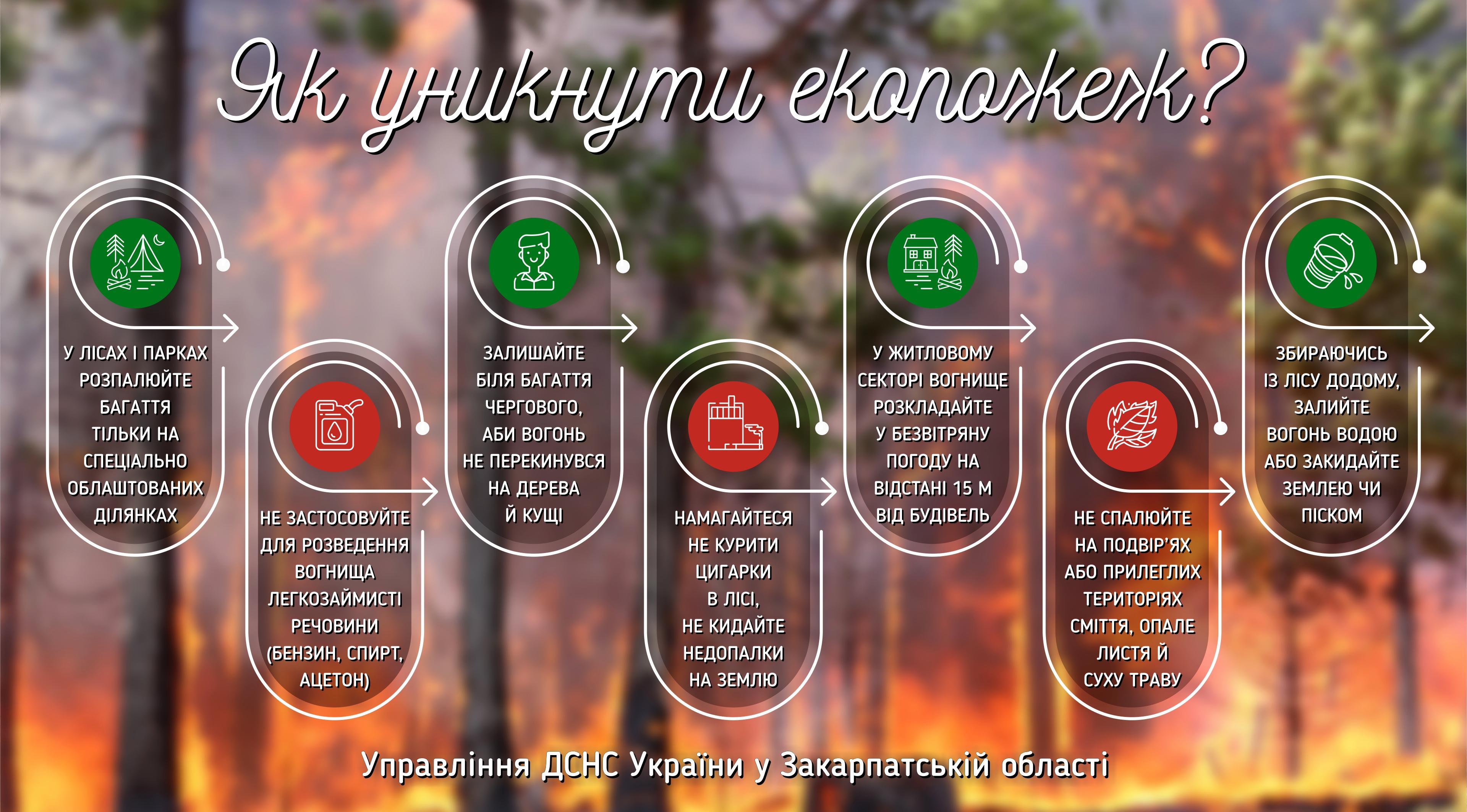 eko-pozhezhi.jpg