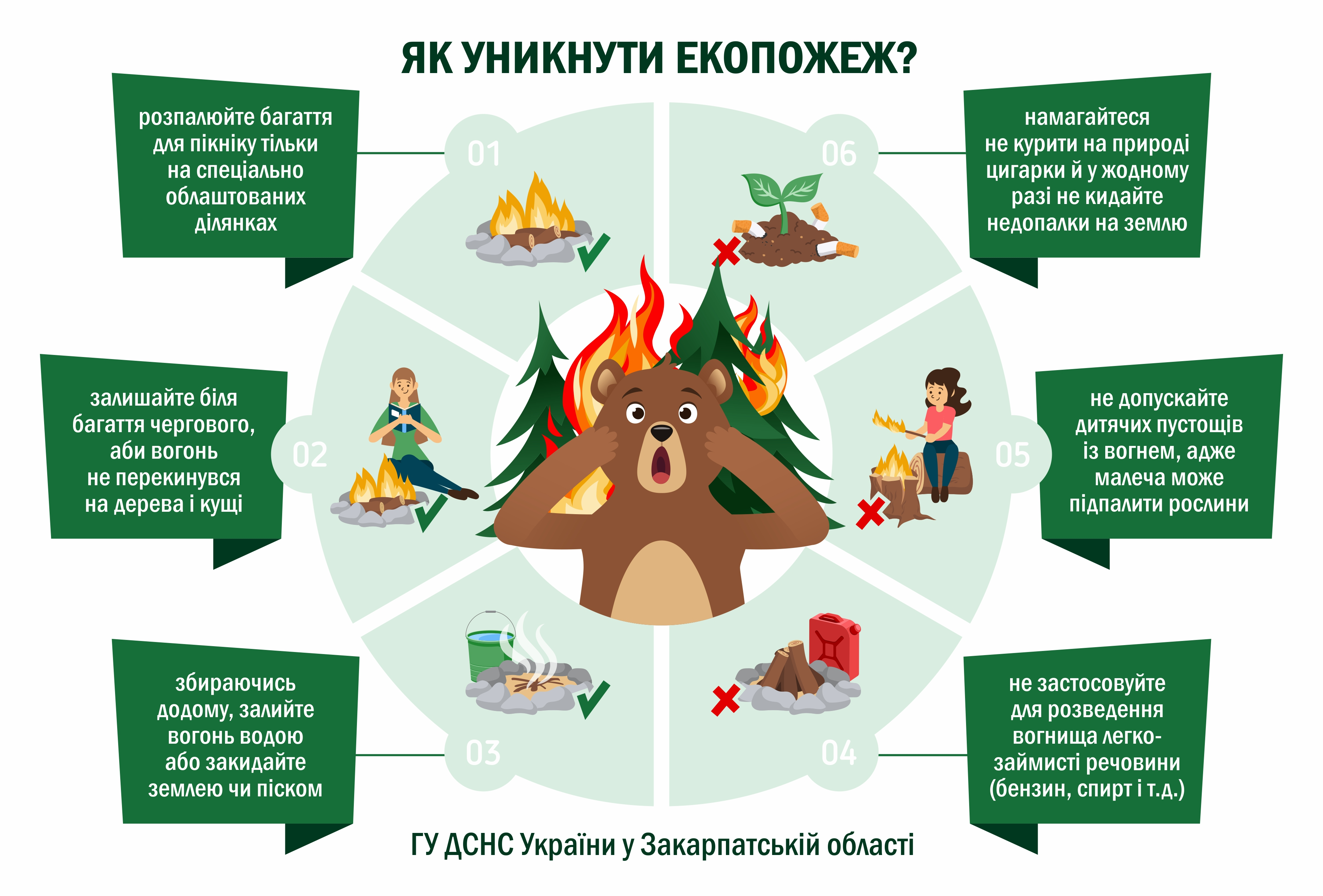 ekosystemy_bear_gu.jpg
